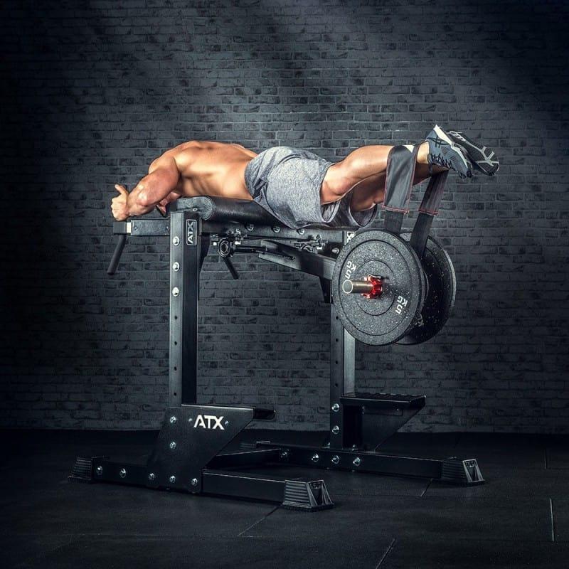 reverse hyper exercise